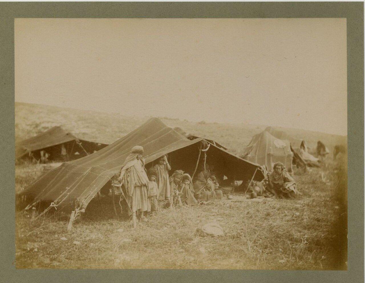 1875. Кочевники