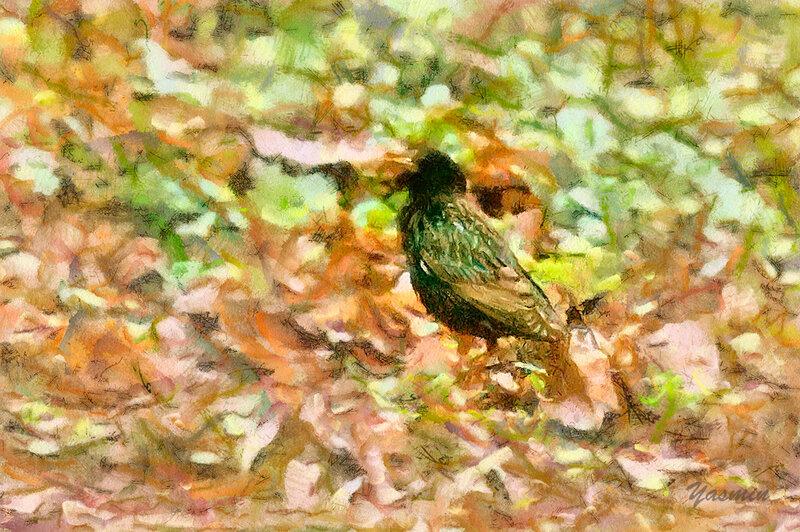 IMG_1342_DAP_Watercolor.jpg