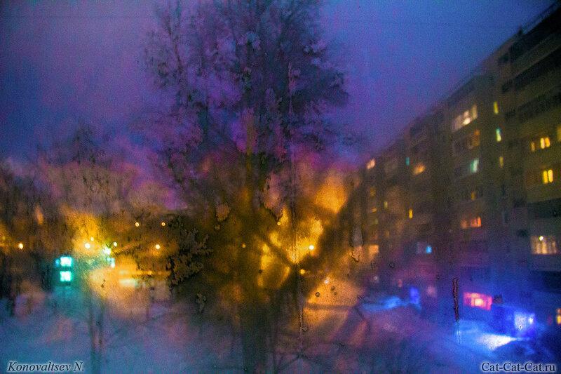 Ночное окно в инее