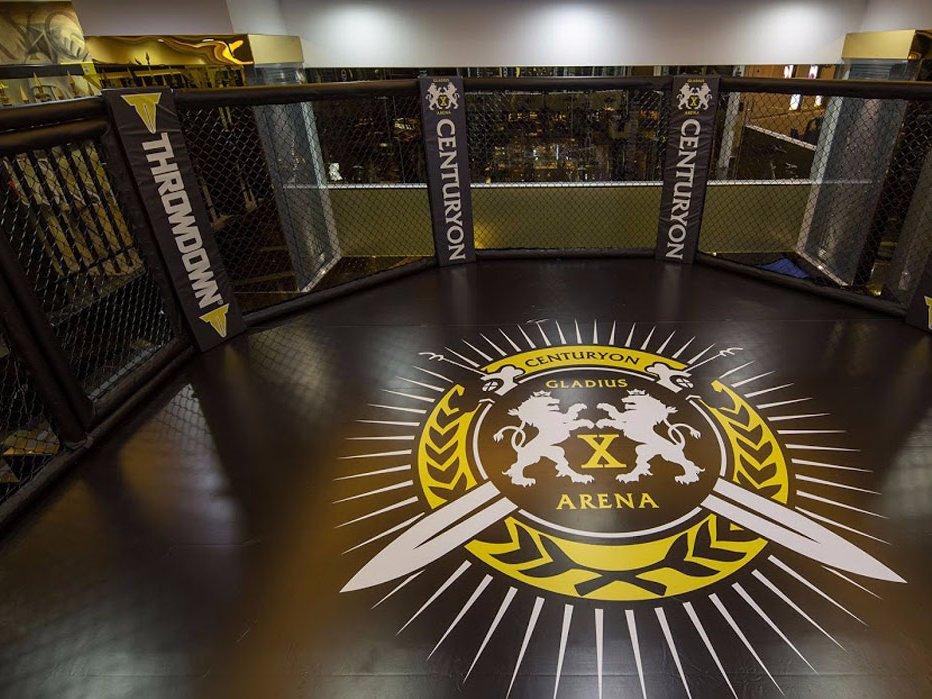 Оборудование для тренировок варьируется от стандартных тренажеров до MMA-ринга.