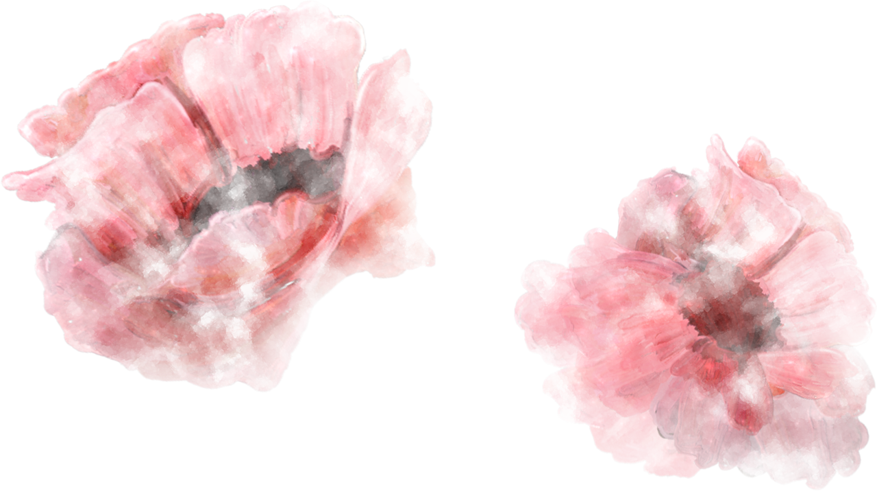 NLD Floral Overlay.png
