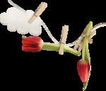Spring_Florals_WendyP_el (29).png