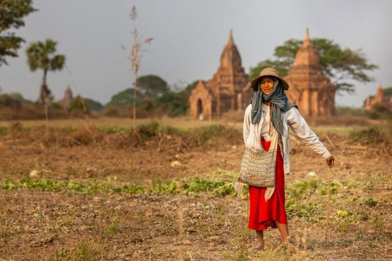 Баган   главная достопримечательность Мьянмы