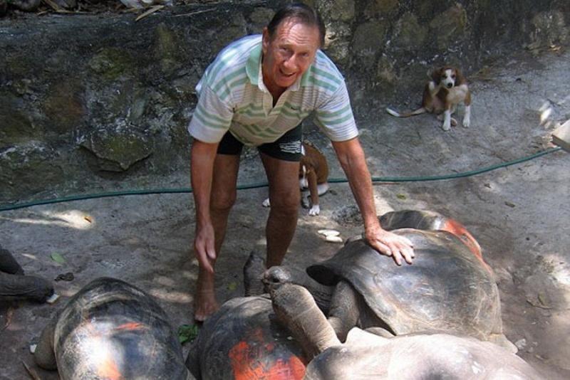 Настоящим сокровищем острова стали сотни гигантских черепах, которые наСейшелах были почти истребле