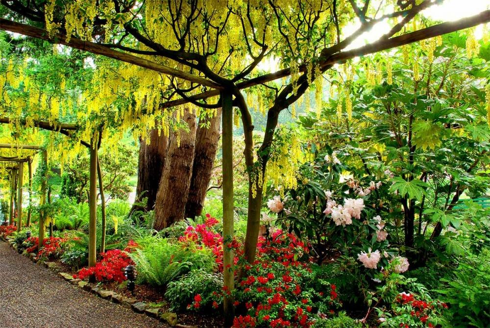 Всередине 2009года, вдень своего столетия, сады Бутчартов официально были признаны национальным и