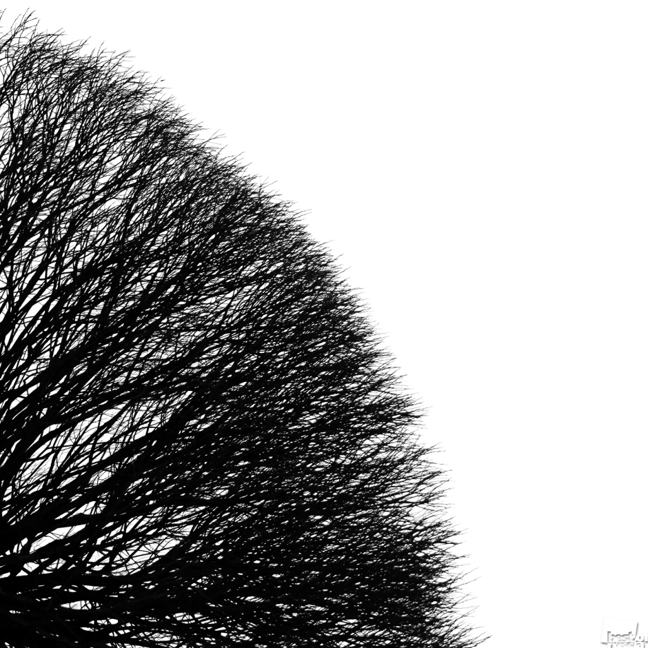 Зимний минимализм. Екатерина Калашникова.