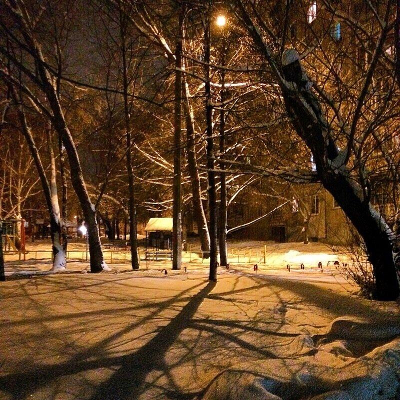 Високосный январь