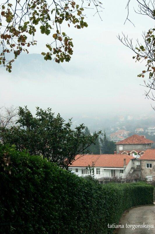 Вид на Србину
