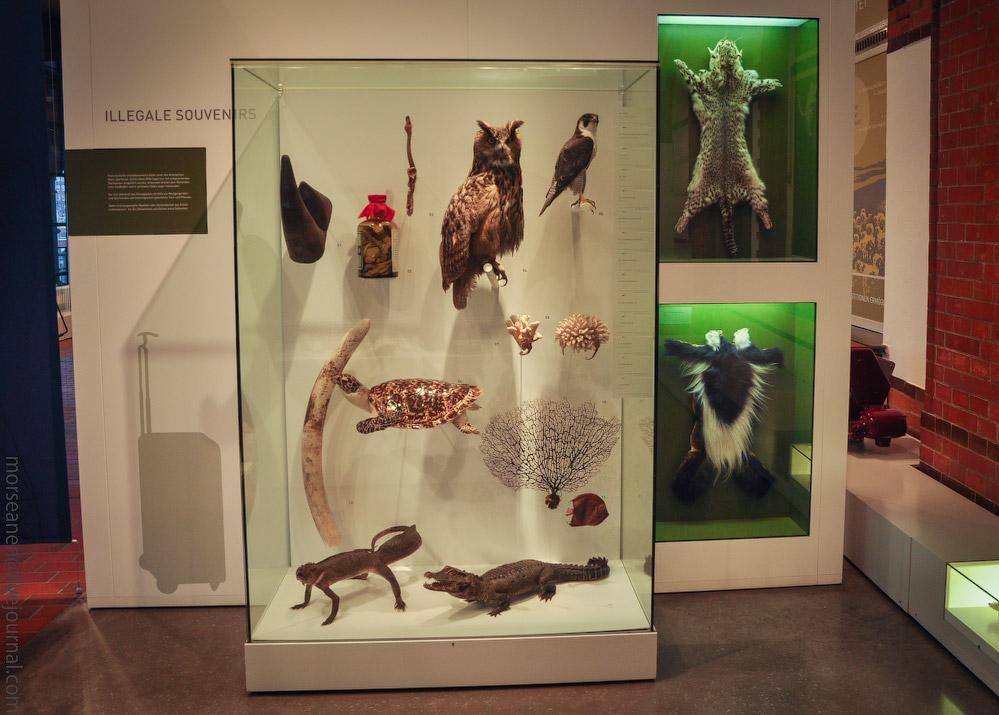 Zollmuseum-(15).jpg