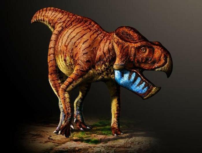 Палеонтологи нашли два новых вида динозавров в музее