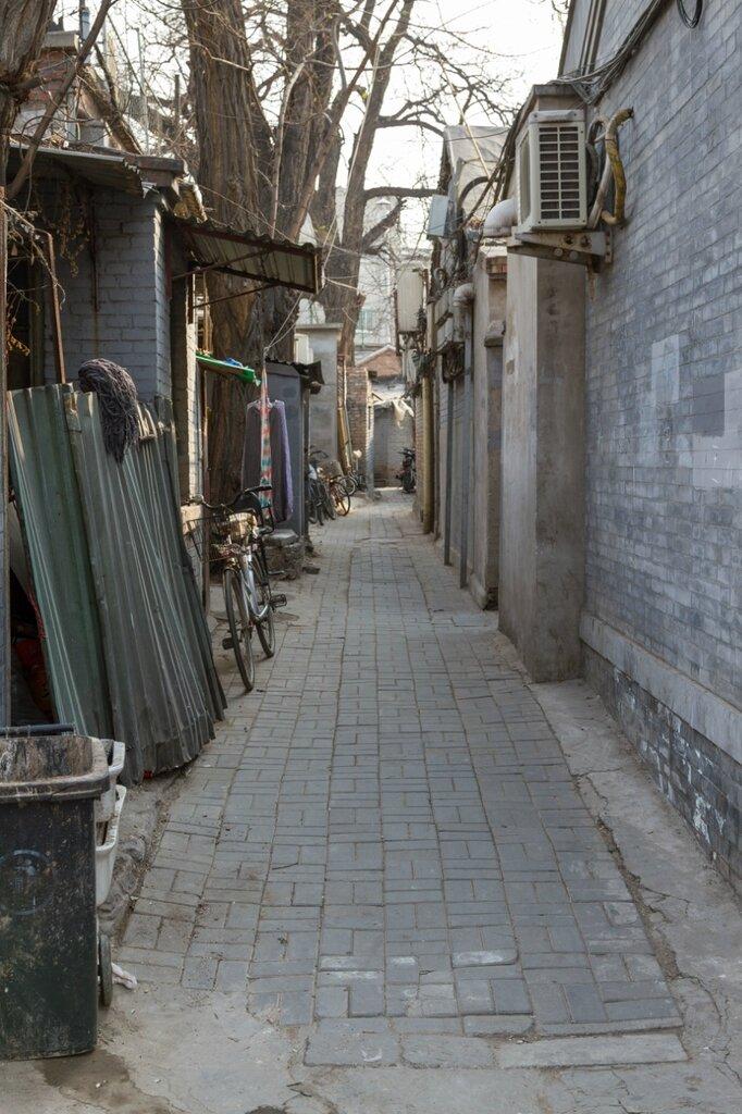 Пекин, хутуны
