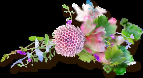 NLD Flower Cluster 1.png
