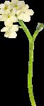 Spring_Kiss_Palvinka_el (43).png