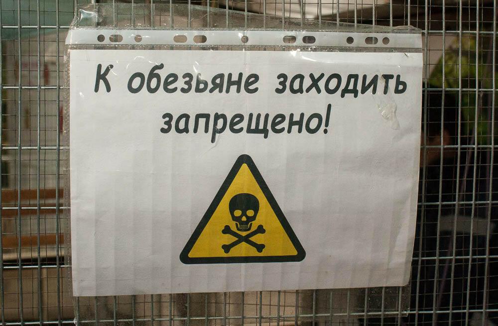 Контактный зоопарк в Коньково