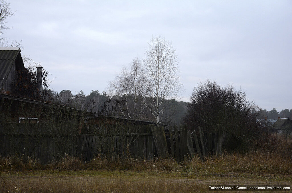 Деревня глубокой осенью
