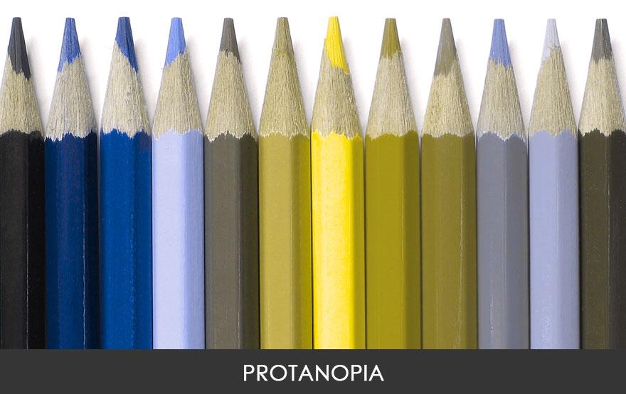 Страдающие протанопией видят красный и зелёный цвета довольно блёклыми, а жёлтый и синий почти таким