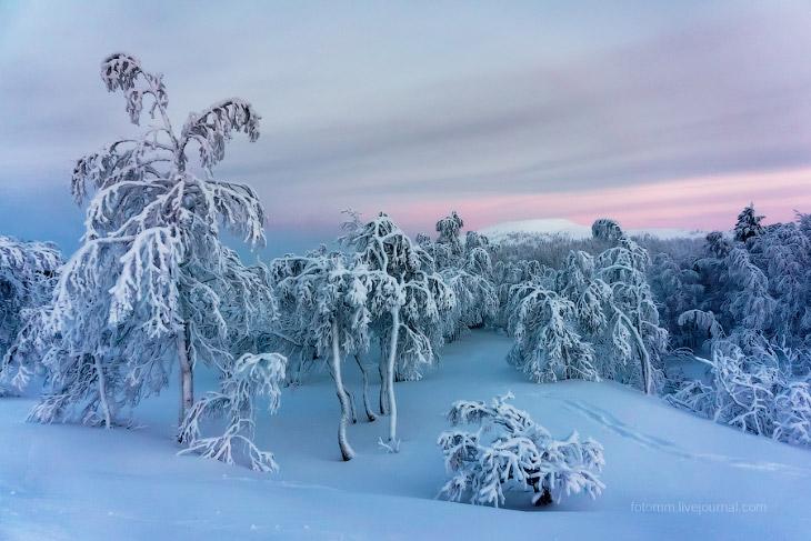 Финляндия. Снежные ландшафты (15 фото)