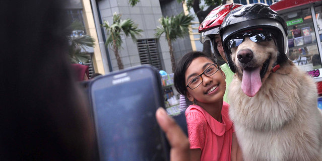 A fan gets a photo with Armani, on January 12, 2015, Surabaya, Indonesia. (Photo by Jefta Images/Bar