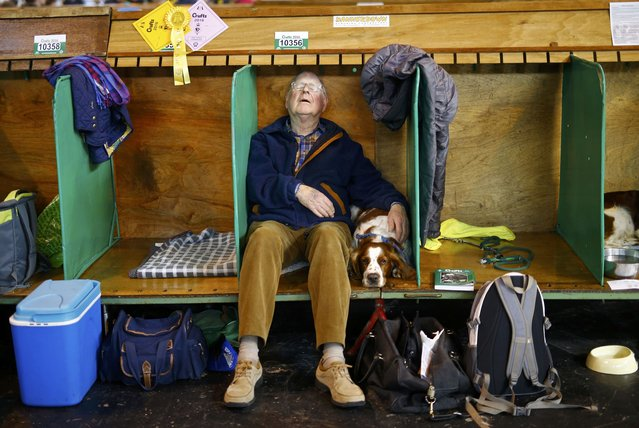 A man sleeps besides his Welsh Springer Spaniel during the second day of the Crufts Dog Show in Birm