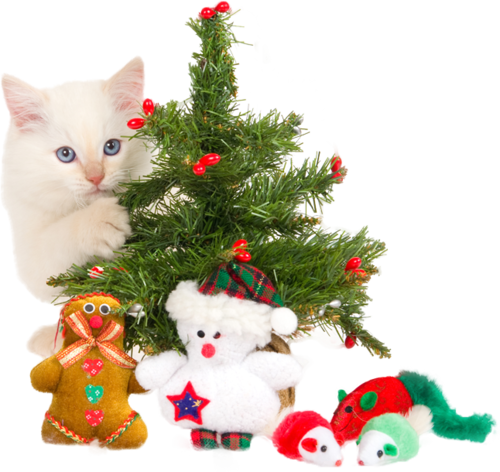 Christmas ClipArt #15 (207).png