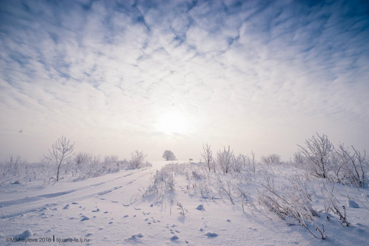 ночные зима снежная целина фото гто подвижная