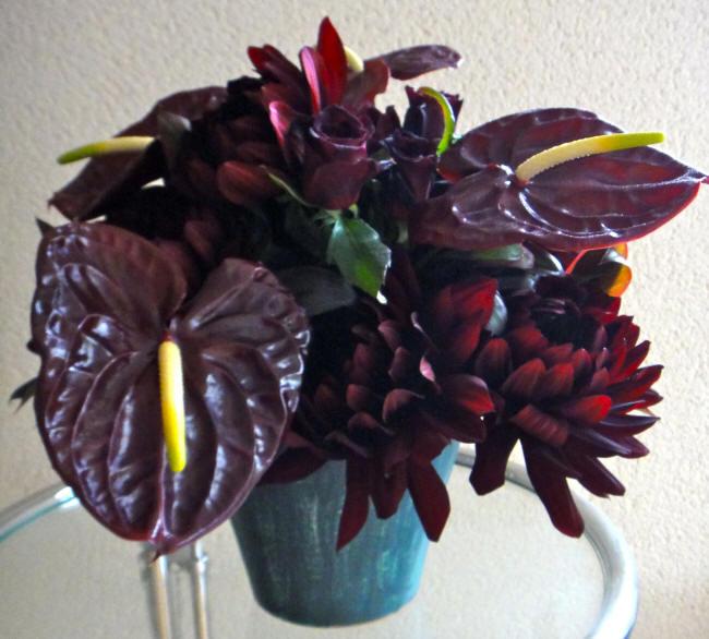 чорні квіти