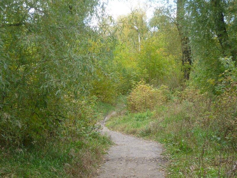 Парк в Омске (Park in Omsk)