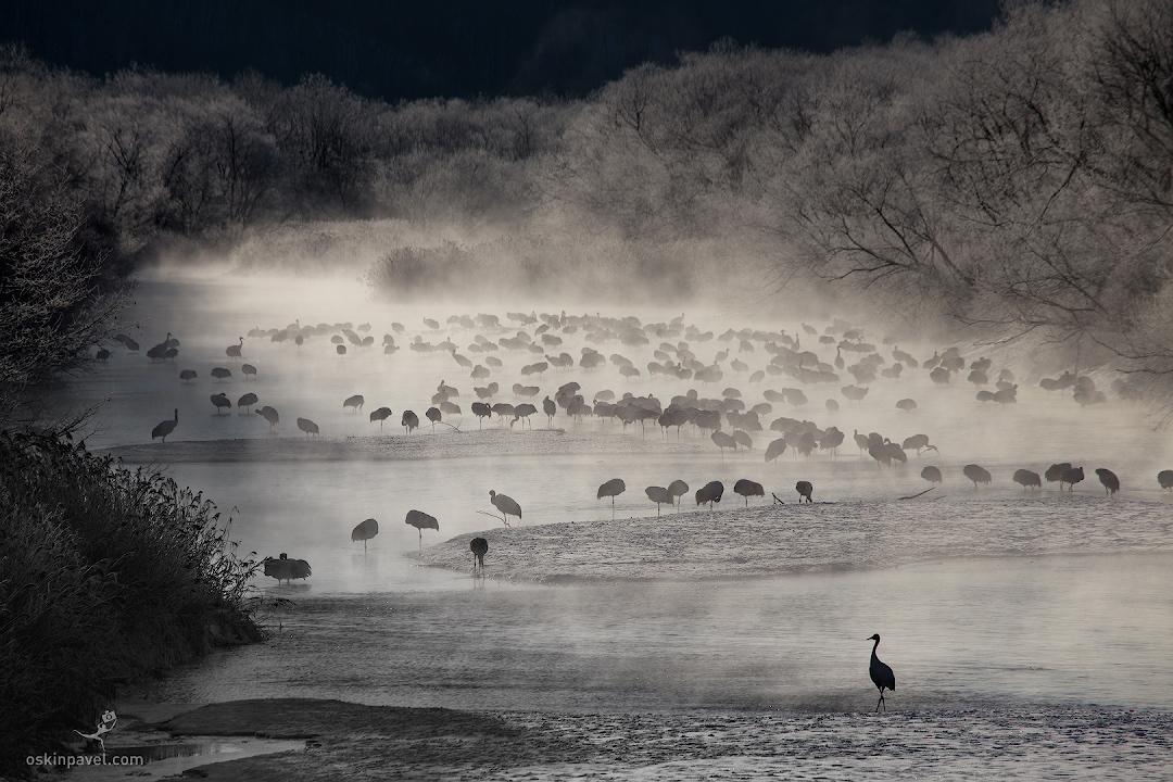 Иранский фотохудожник пейзажист