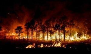 Калифорния в огне - горит более 7-ми тысяч гектаров