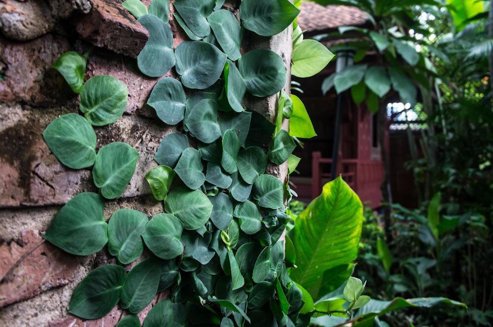 Дом Джима Томпсона Бангкок