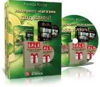 Книга Интернет-магазин под ключ + VIP модуль + Клиенты из Яндекс-Директ. Видеокурсы (2013) mp4  1259,52Мб