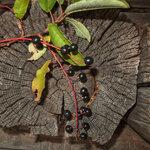 Вторая жизнь старого дерева