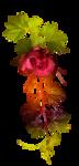 Осенняя роза