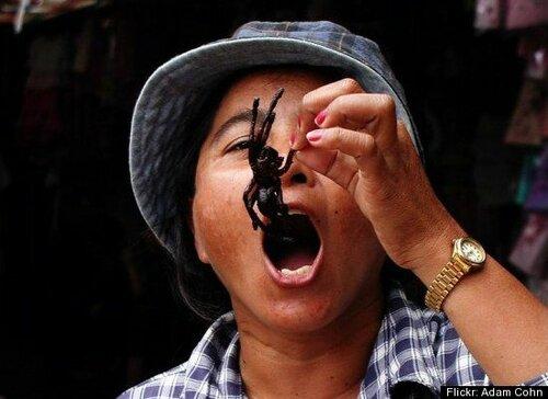 поедаем жареных паучков, кухня Камбоджи фото