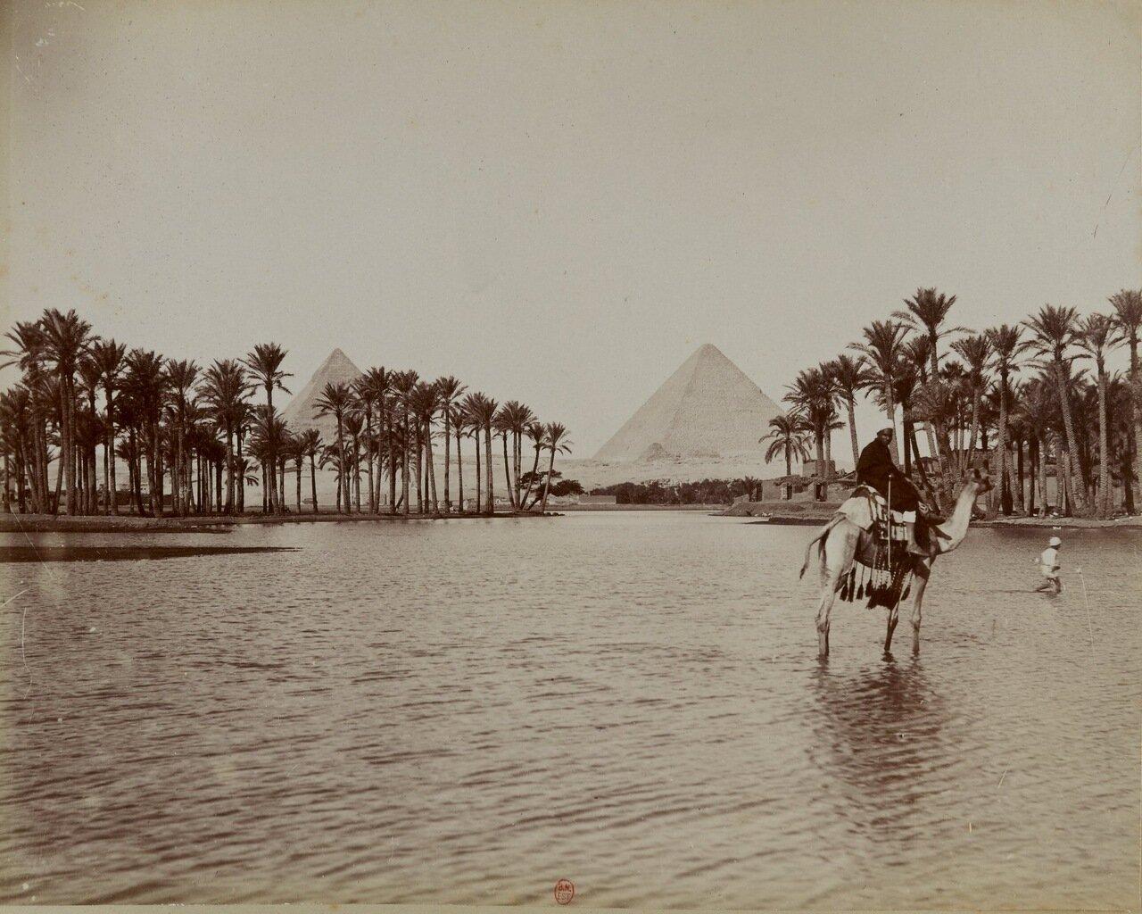 Нил вблизи пирамид