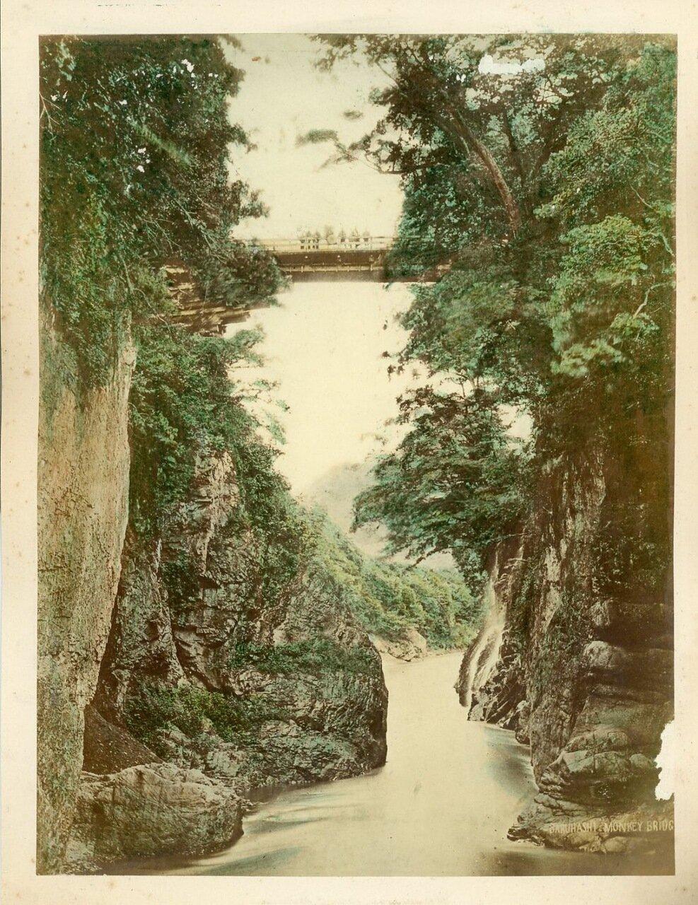 Сарухаши. Обезьяний мост