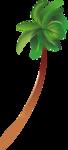 пальмы море (12).png