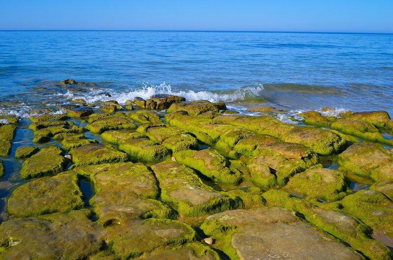 зелёные камни
