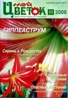 Мой цветок 2006 №11 pdf 45,6Мб