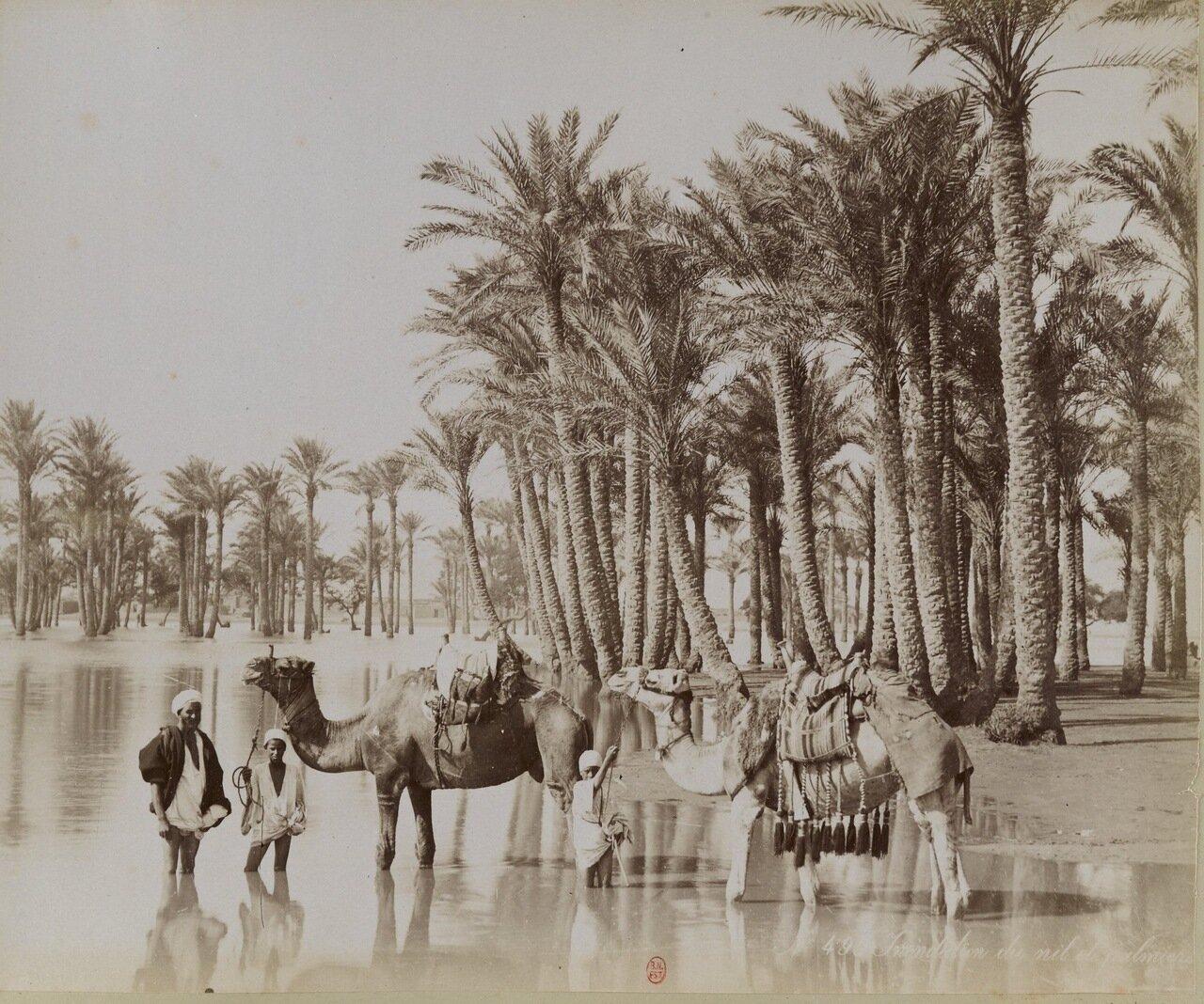 Разлив Нила;