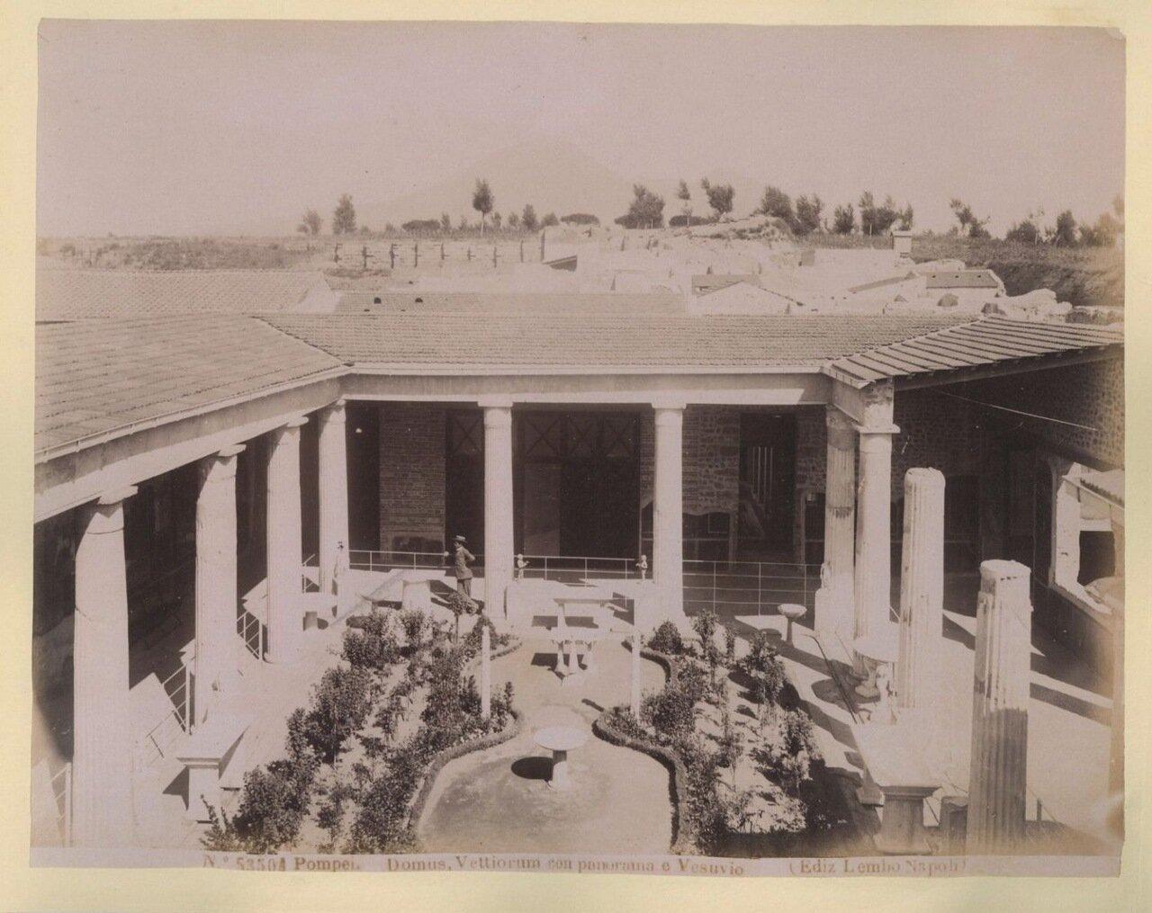 1880. Панорама Везувия