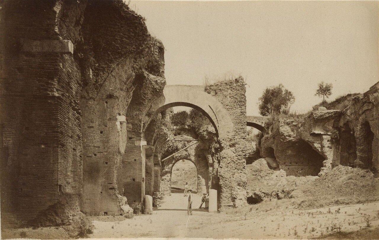 Руины Палатина. 1875