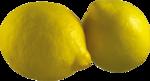цитрусы (59).png
