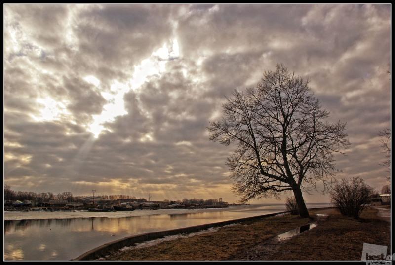 Елагин остров. Автор Екатериа Федорова.jpg