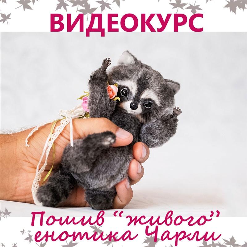 Енотик Чарли Автор Елена Голофаева