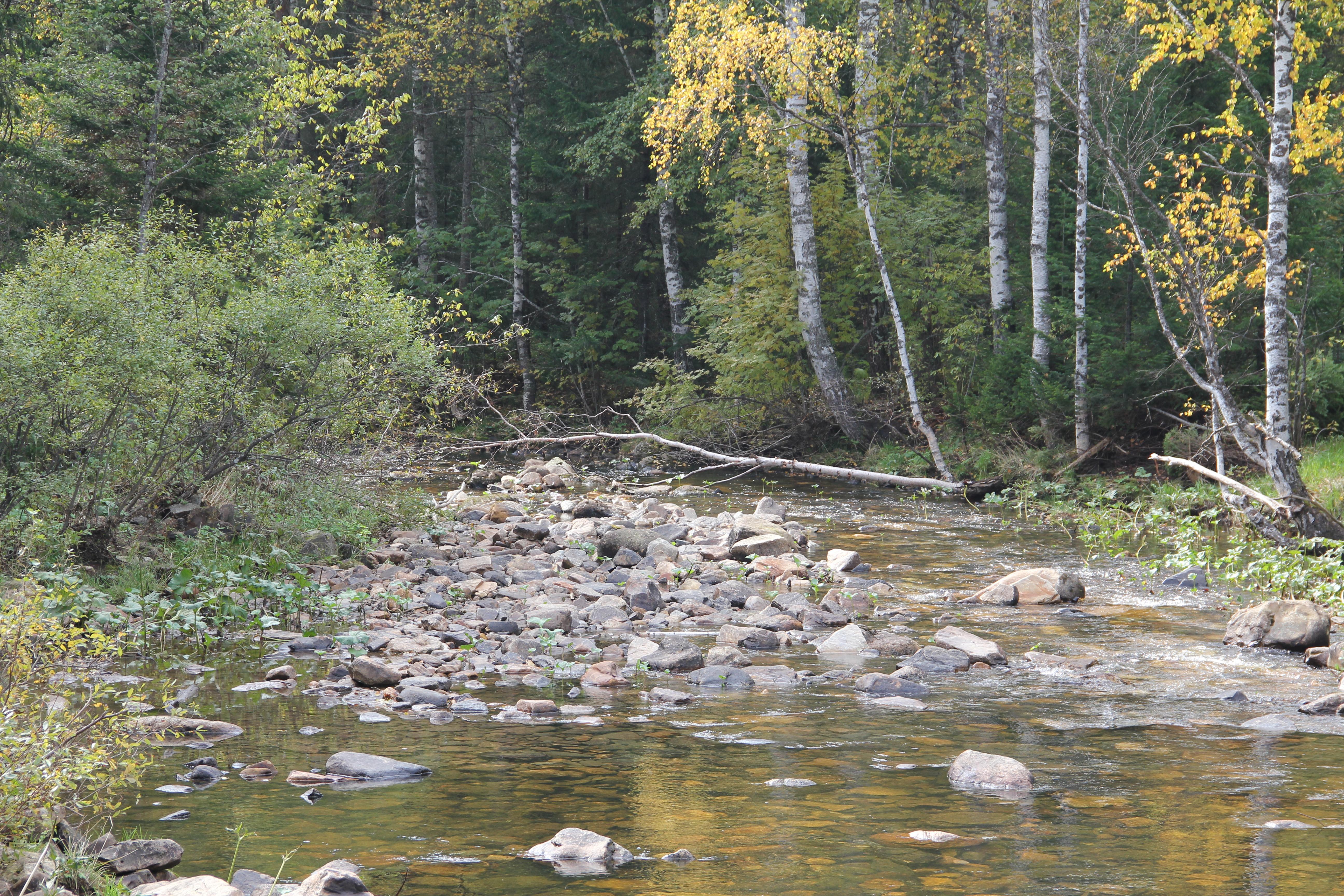Россыпь камней в русле реки (30.09.2014)