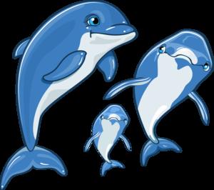 дельфинята