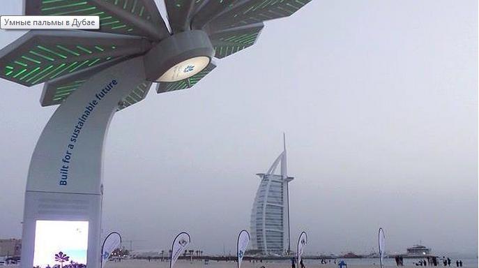 Умные пальмы в Дубай 2.png