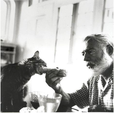 """a mans dominance over his wife in ernest hemingways cat in the rain """"cat in the rain"""" — ernest hemingway posted on february 11, 2014 by biblioklept """"cat in the rain"""" by ernest hemingway there were only two americans."""