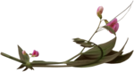 feli_ss_pink flowers with foliage2.png